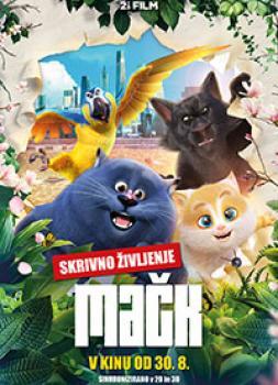Film - Skrivno življenje mačk