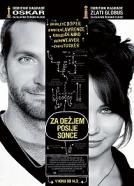 <b>Bradley Cooper</b><br>Za dežjem posije sonce (2012)<br><small><i>The Silver Linings Playbook</i></small>
