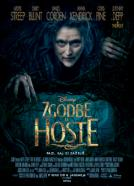 Zgodbe iz hoste (2014)<br><small><i>Into the Woods</i></small>