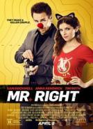 Mr. Right (2015)<br><small><i>Mr. Right</i></small>