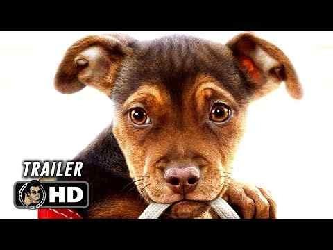 A Dog's Way Home - trailer 1