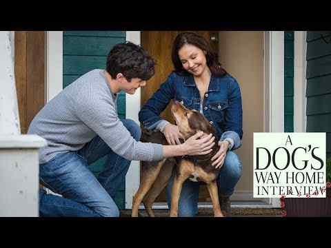 A Dog's Way Home - Interviews